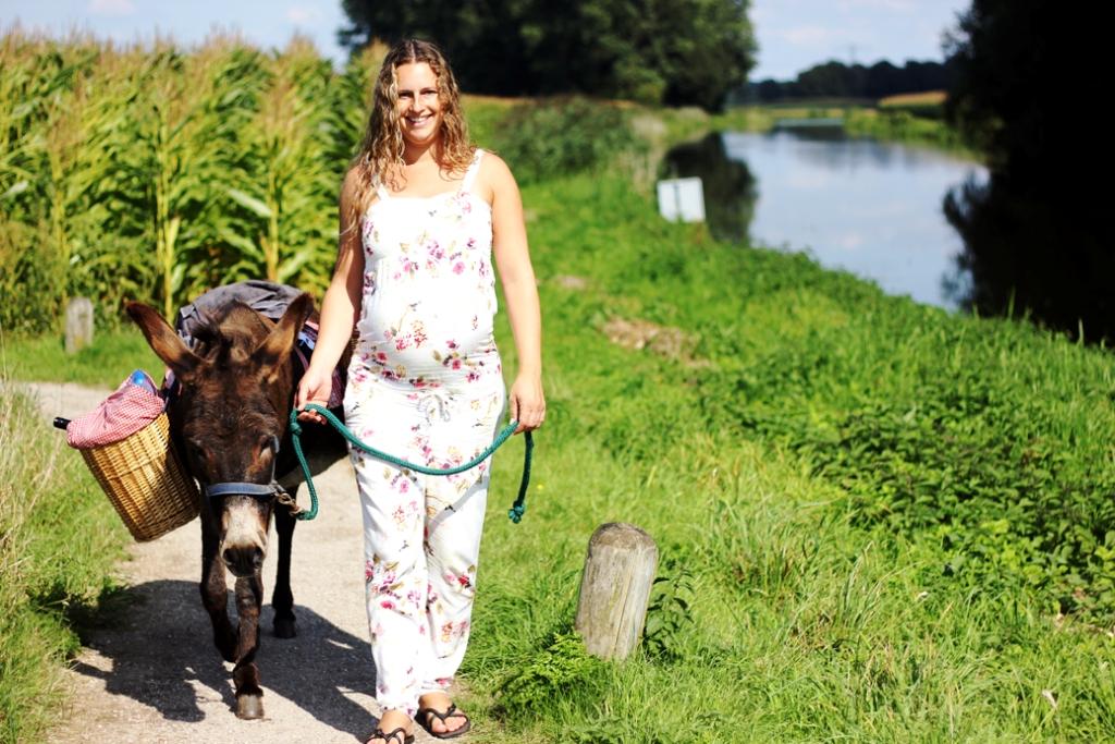 Ik wandelen met ezel blog