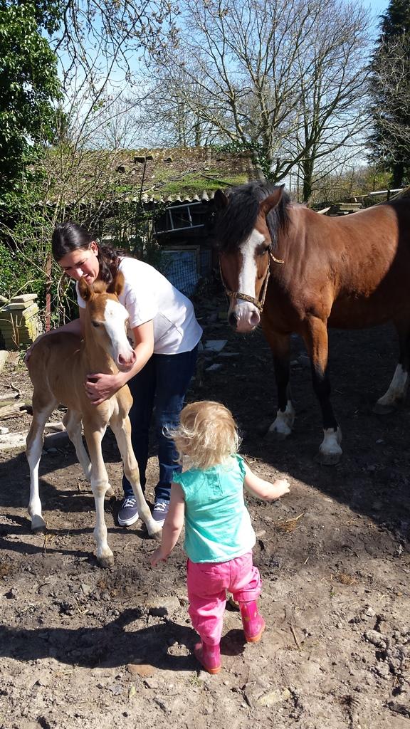 annet,liza, paardjes