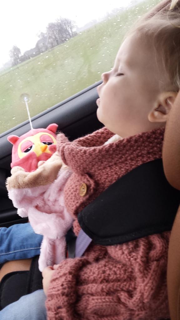 slapen in de auto met beertje