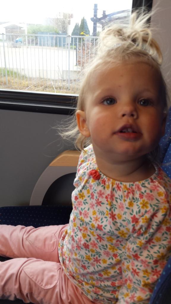 in de trein