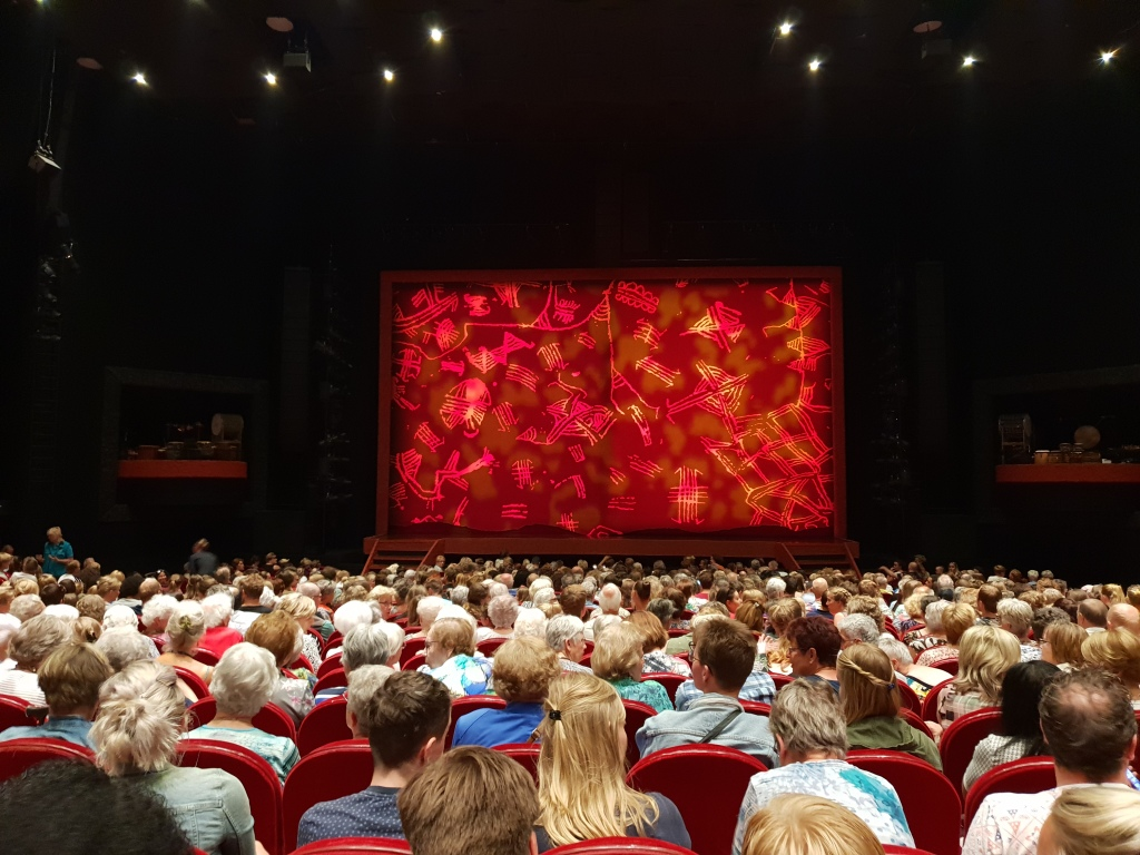 volle zaal musical lion king